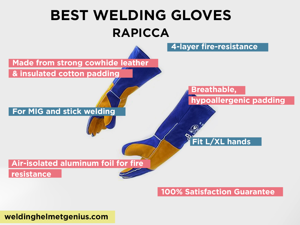 RAPICCA Review, Pros and Cons