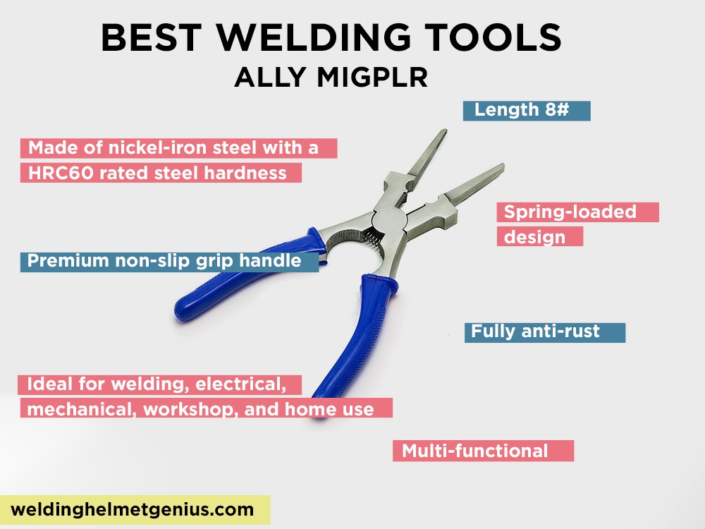 ALLY MIGPLR Review, Pros and Cons